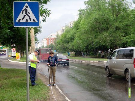 """""""Зебра"""" столкнула тамбовских автомобилистов"""