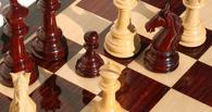 В Тамбове в шахматном фестивале принимает участие рекордное количество игроков