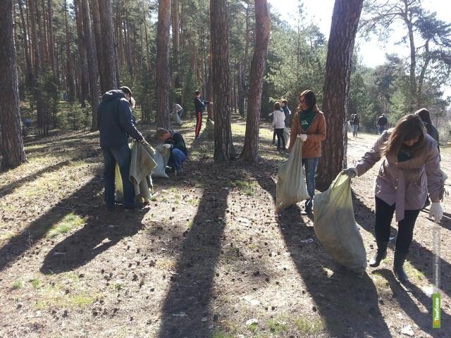 Волонтеры и чиновники убрались в «Сосновом углу»