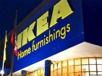 Европейцы обвинили IKEA в уничтожении российских лесов
