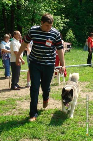 На тамбовщине собрались собаководы всего Черноземья