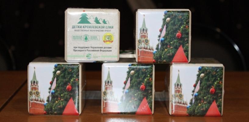 В лесном питомнике региона высадят семена кремлёвской ёлки