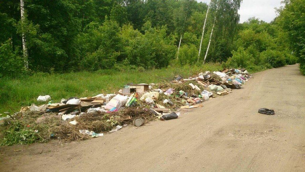 Невозможно терпеть! Тамбовские дачники месяц добиваются вывоза мусора с зеленой зоны