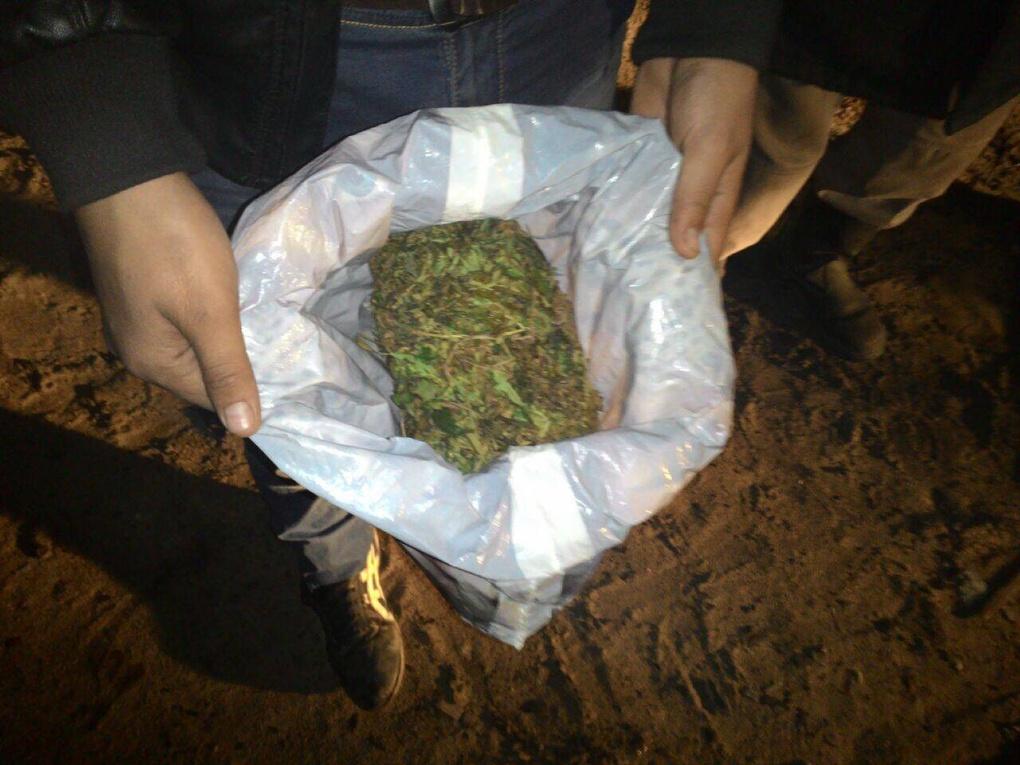 Марихуаны наркокурьер орбите марихуана на