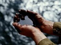 Нефтяной кризис в России начнется через 7 лет