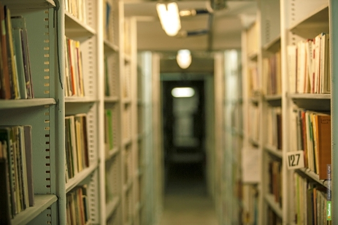 В Тамбове зажгут «Свет под книжной обложкой»