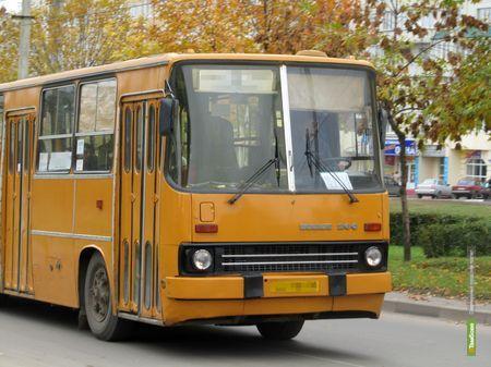 В тамбовских автобусах расклеят детские рисунки