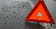 18-летняя тамбовчанка угодила под машину