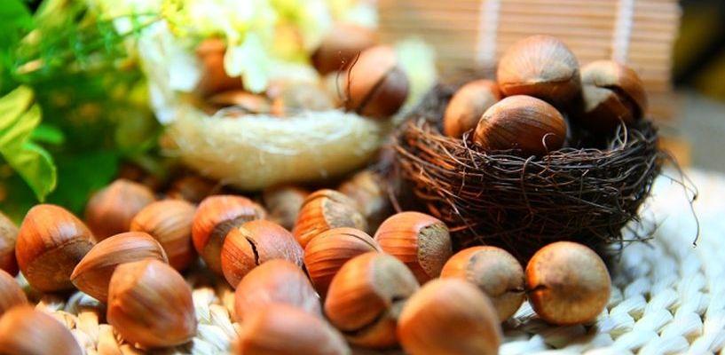 Учёные нашли в мясе и орехах жиры, которые продлевают жизнь