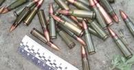 Житель области незаконно хранил боеприпасы