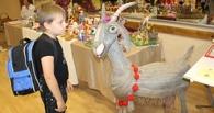 Рассказовские мастерицы вяжут экспонаты для Музея козы