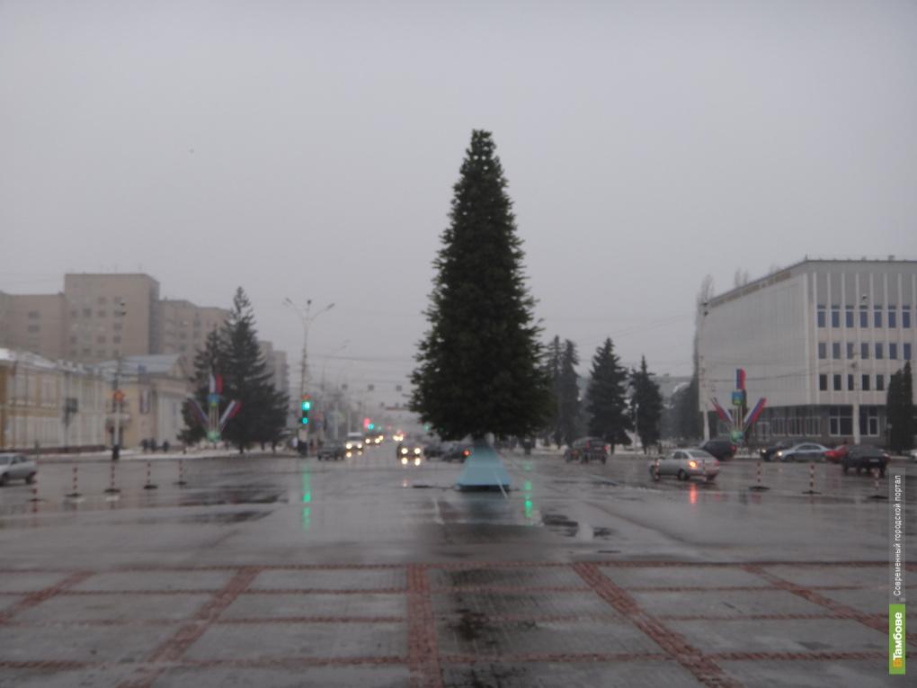 Аномальная зима в Тамбове продолжается