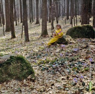 Жительница Ржаксинского района бросила больную дочь в лесу