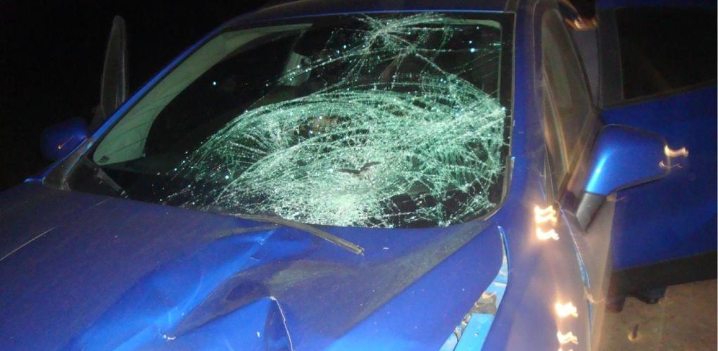 На трассе под Тамбовом иномарка насмерть сбила мужчину