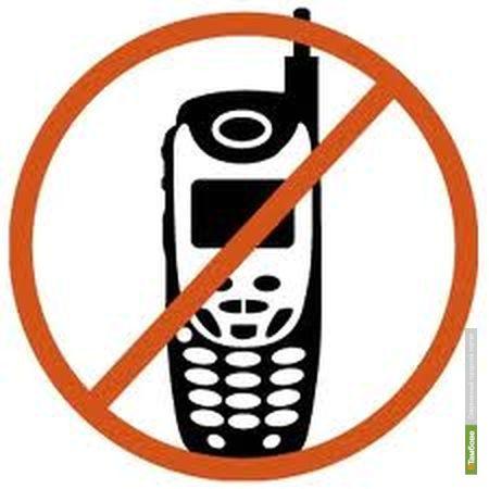 В Тамбове в пунктах сдачи ЕГЭ установят «заглушки» сотовой связи