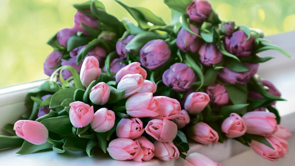 Утки, собаки с тюльпанами и конфеты: чем хвалились тамбовчанки 8 Марта?