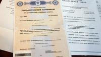 Медведев предложил продлить выплаты материнского капитала до 2050 года