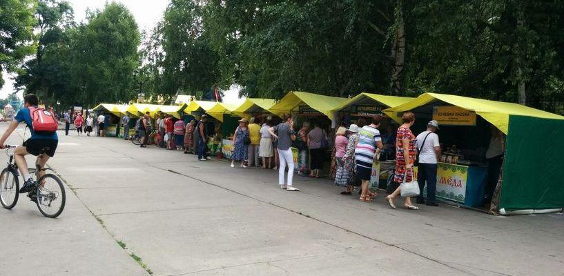 В Тамбове открылась ярмарка мёда
