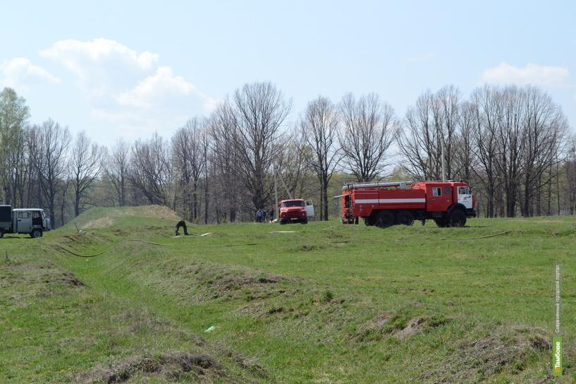 В регионе начались работы по противопожарному обустройству лесов