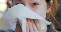 За неделю гриппом и ОРВИ заболели более 9 тысяч человек