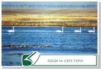 Особо охраняемых природных территорий на Тамбовщине станет на треть больше