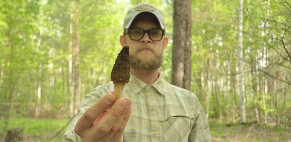 «К грибам я отношусь как к мистическим живым существам»: интервью с самым популярным «грибным» инстаблогером России