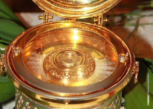 Верующие в Тамбове смогут поклонится мощам Матроны Московской