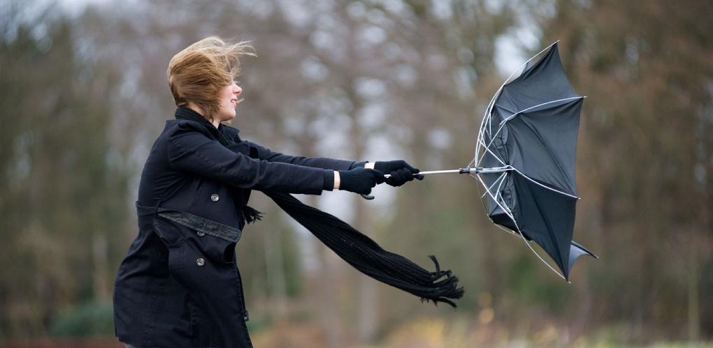 МЧС предупреждает: будет ветрено!