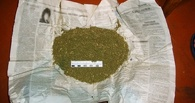 Тамбовские полицейские задержали двух мужчин за хранение наркотиков