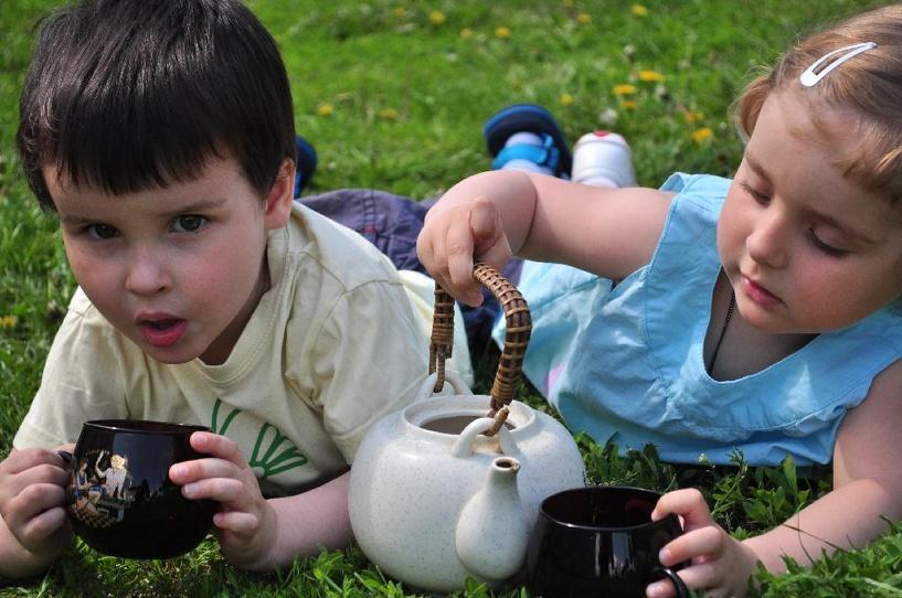 Для тамбовчан устроят Чайный пикник