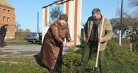 Тамбовчане за год посадили больше 180 тысяч деревьев