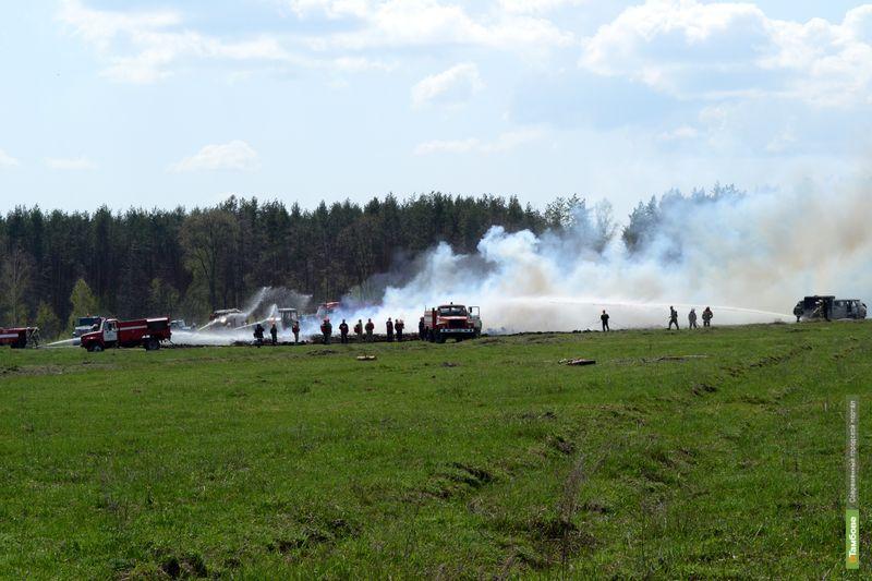 Вероятность лесных пожаров на Тамбовщине выросла