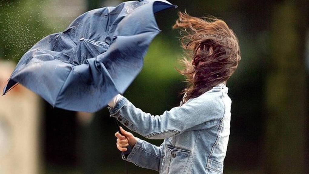 На Тамбовщине ожидается сильный ветер: порывы могут достигнуть 18 м/с