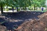 Тамбовчане собирают подписи, чтобы сохранить парк 40-летия Победы