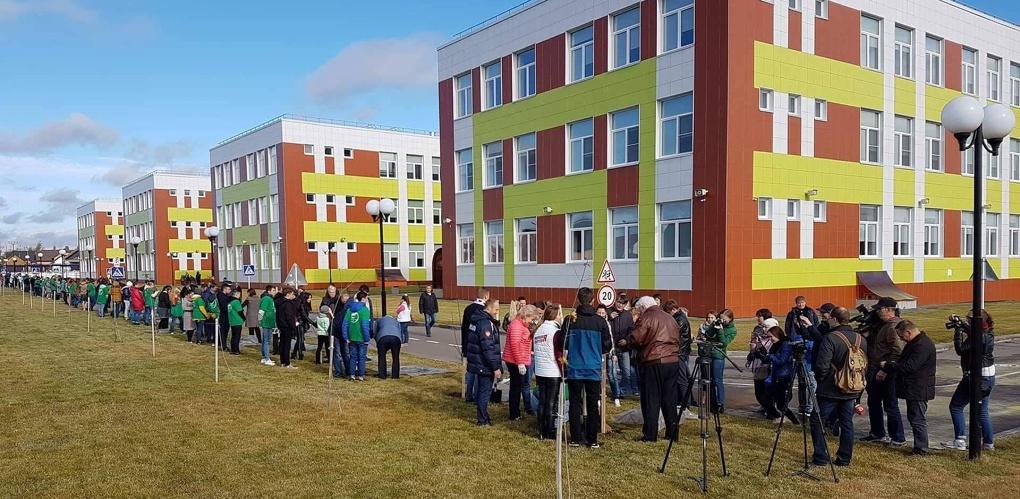 На территории школы Сколково высадили аллею Президента