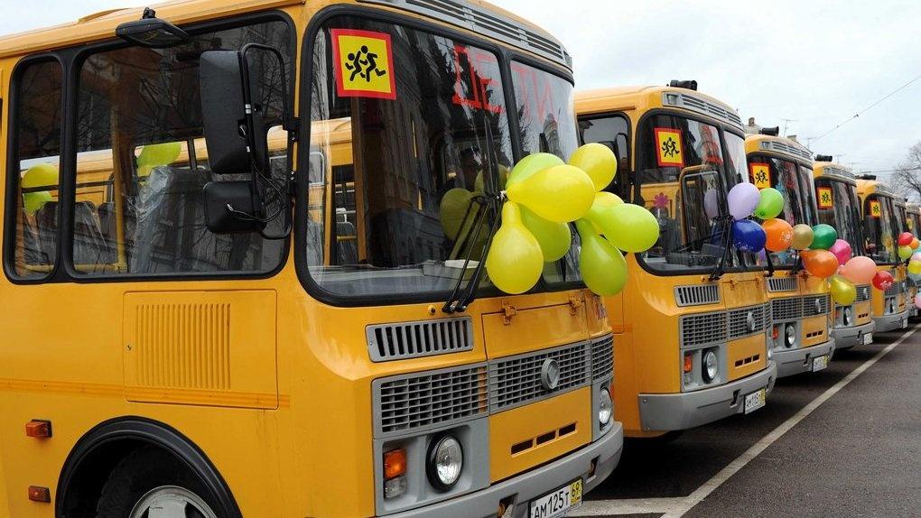 Теперь детей в России будут перевозить на автобусах с маячками