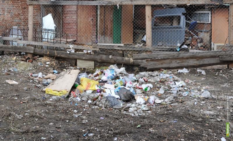 Тамбовчане выбили мусорный контейнер, устроив несанкционированную свалку