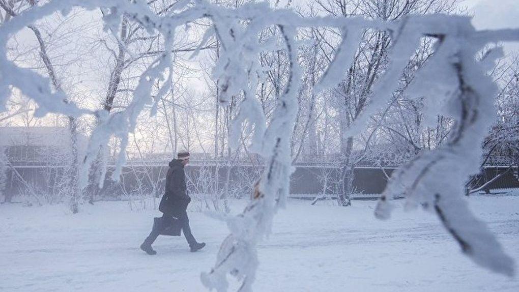 Как не получить обморожение: рекомендации от Роспотребнадзора