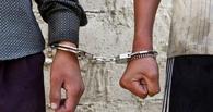 Тамбовский участковый установил подозреваемых в совершении кражи