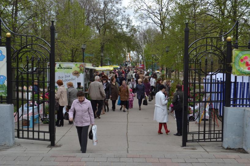 В Тамбове открылся фестиваль цветов