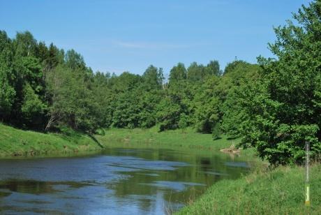 В Гавриловском районе утонул 50-летний тамбовчанин