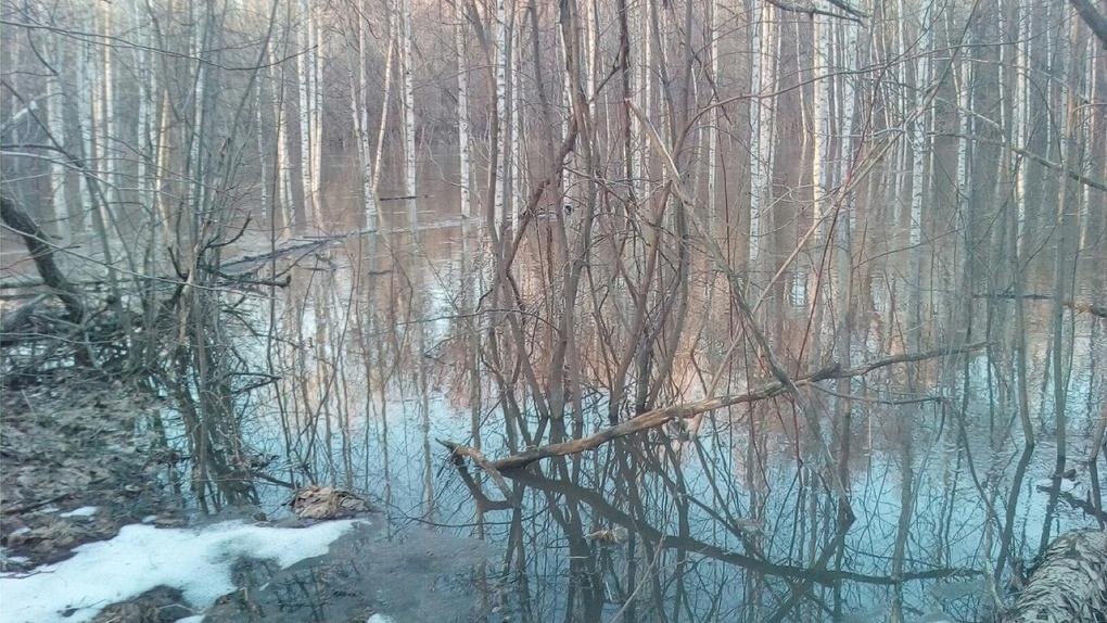 Мосты и дороги в области остаются затопленными, но уровень воды в реках падает