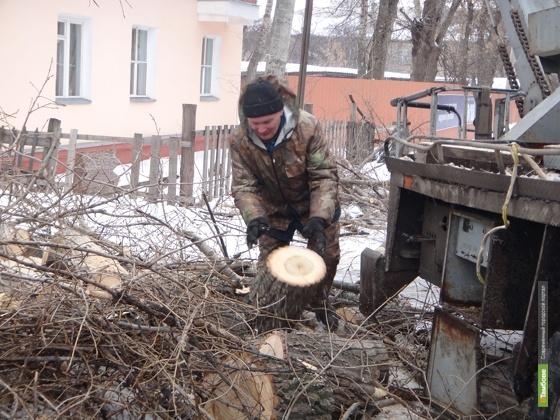 Коммунальные рабочие избавляют Тамбов от аварийных деревьев