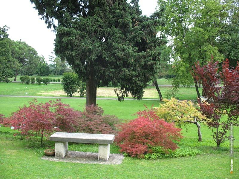 В Тамбове появится новый парк