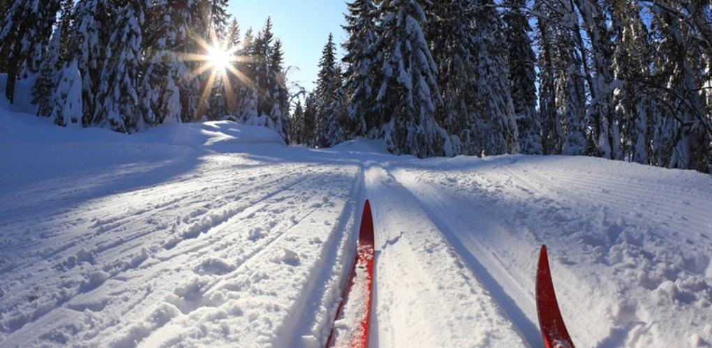 Тамбовчан предупреждают о том, что в сильный мороз лыжный стадион не работает