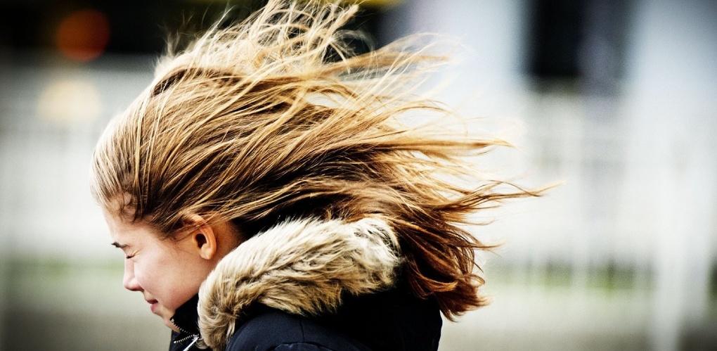 Берегите шляпы: будет ветрено!