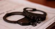 Тамбовские полицейские задержали гастролеров из Ростова