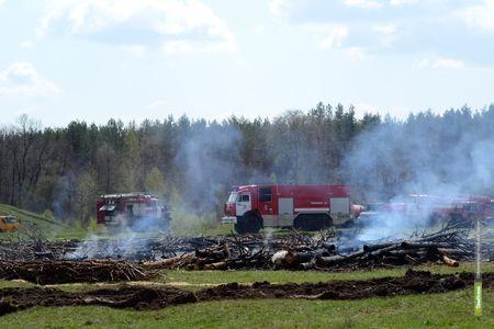 """За 4 месяца тамбовчане """"спалили"""" 3543 гектара травы в лесах"""