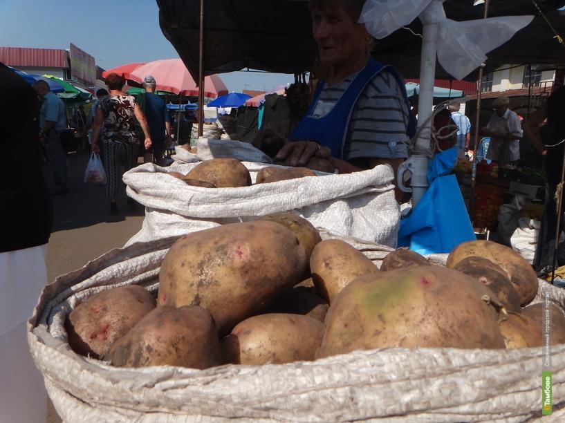 В Тамбовской области собрали половину урожая сахарной свеклы и картофеля