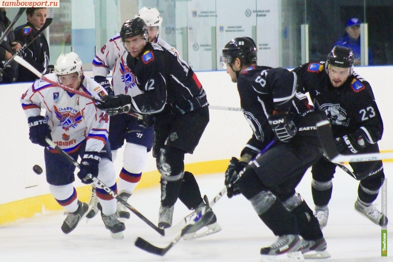 Болельщики ХК «Тамбов» написали открытое письмо в Федерацию хоккея